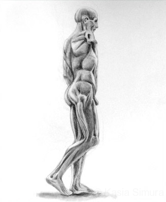 STATUE | Graphite Pencil drawing from life