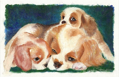 CAVALIER PUPPIES | Oil Painting on Canvasette