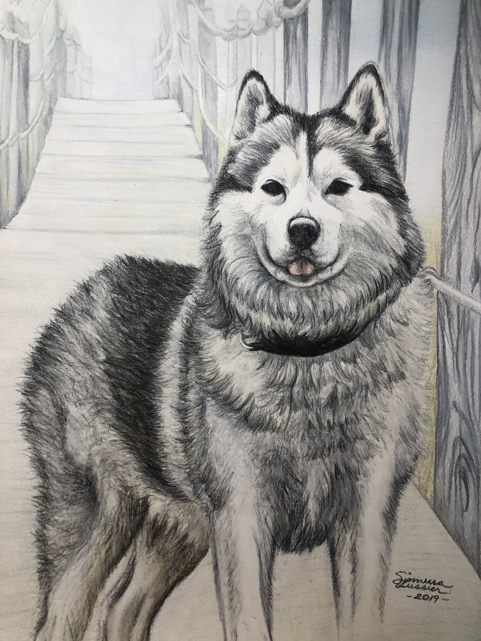 Fanta, Pet Portrait | Pen & Ink and Colored Pencils on Mixed Media Paper | 9 x 12 inches | 2020